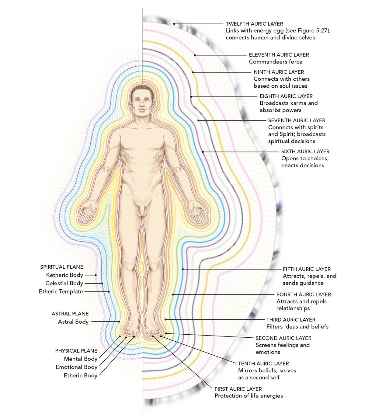 The subtle body and kundalini activation
